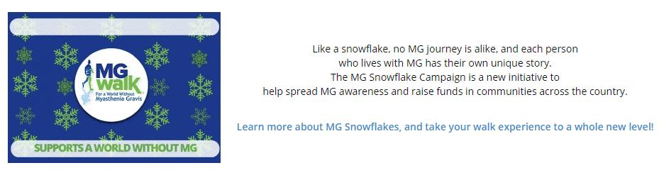 Snowflake Campaign