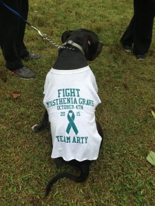 2015 Delaware Valley MG Walk
